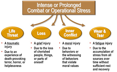 Military Culture Implications for Mental Health and Nursing Care