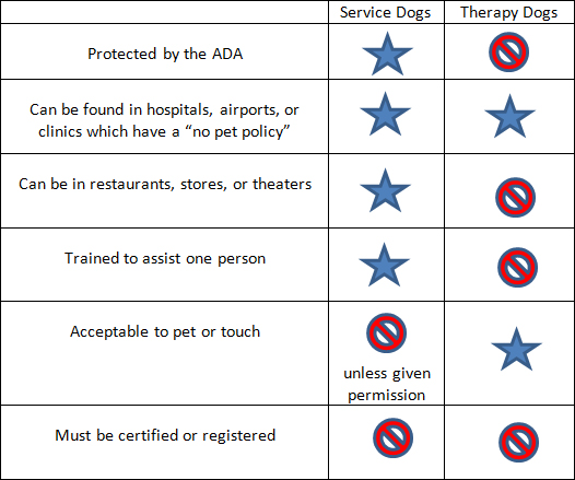 Caring for Patients with Service Dogs: Information for Healthcare ...
